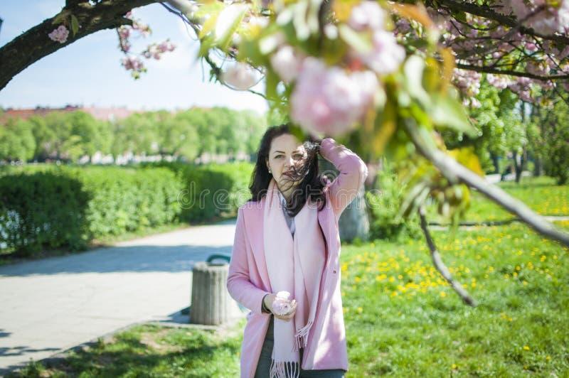 A menina fixa seu cabelo ao enrolar sob a árvore de sakura imagem de stock