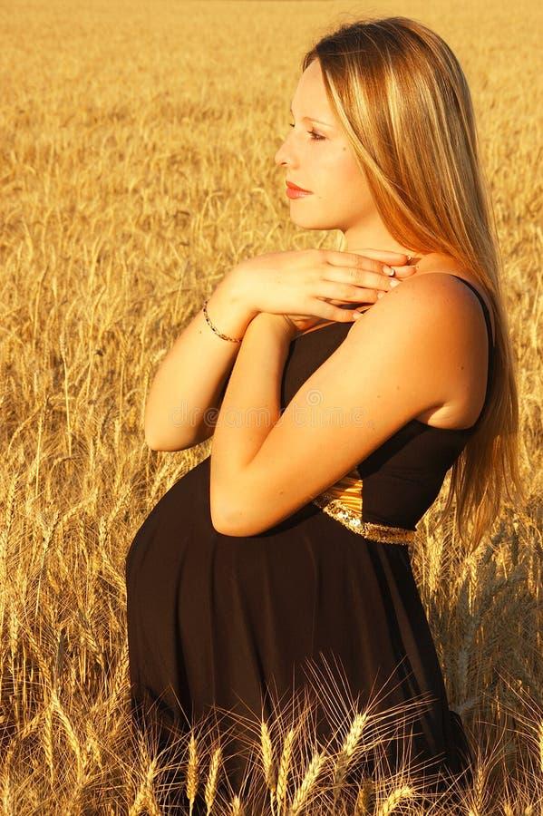 Menina grávida foto de stock royalty free