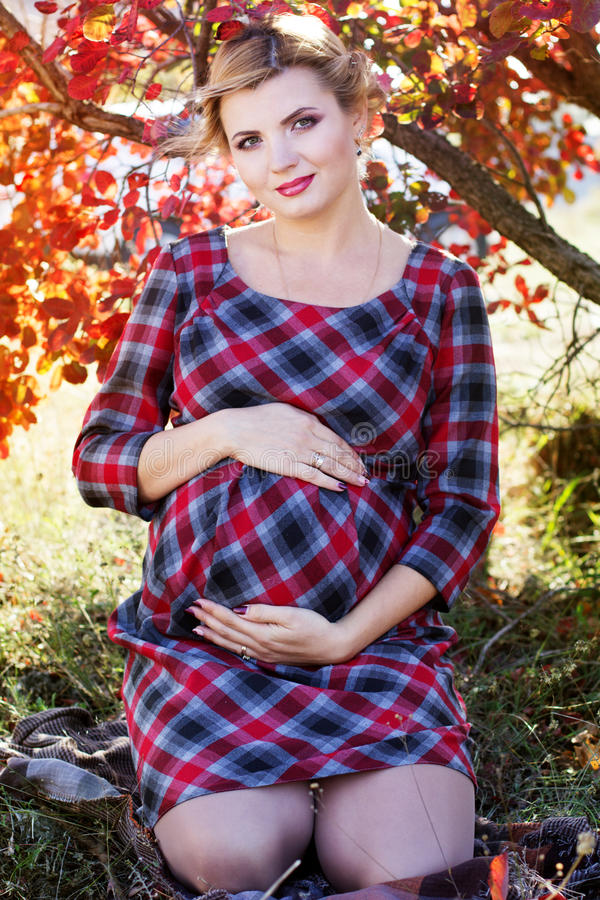 A menina grávida está vestindo o vestido quadriculado no parque fotografia de stock royalty free