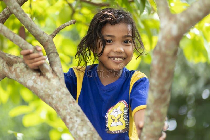 Menina indonésia em uma árvore fotos de stock royalty free