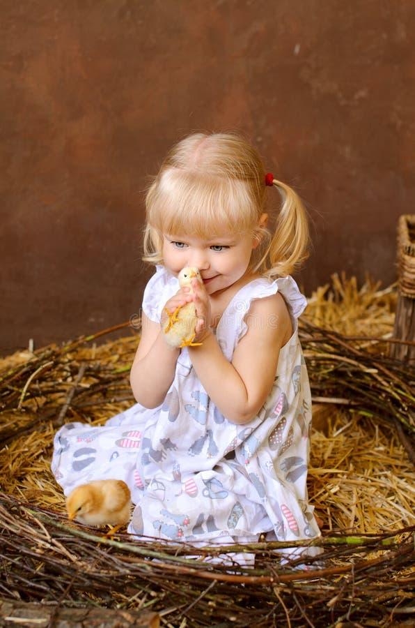 menina loura com galinhas imagens de stock