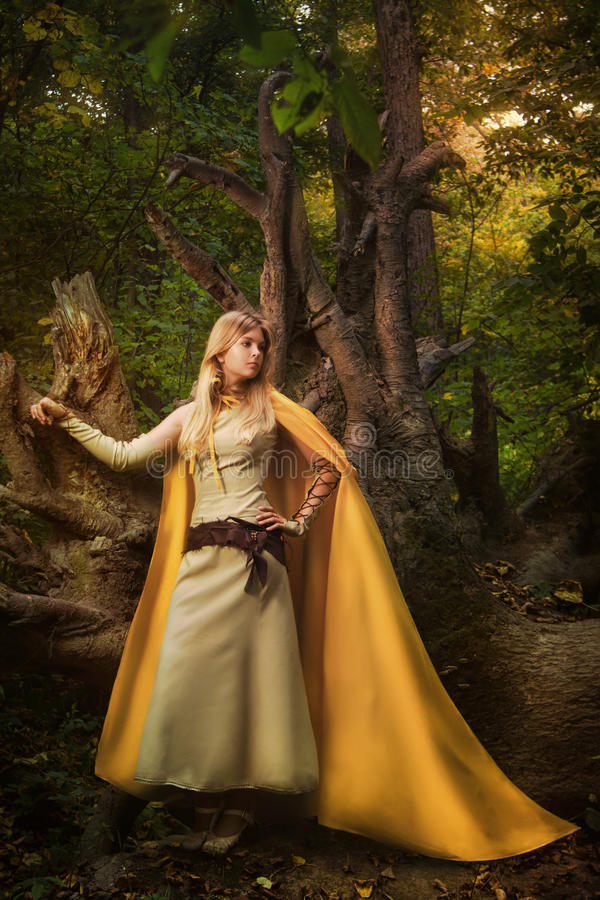 Menina loura em uma floresta mágica fotografia de stock