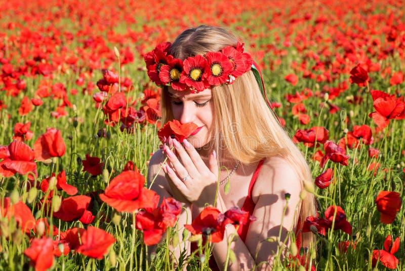 Menina loura nova bonita em um campo da papoila no por do sol fotos de stock