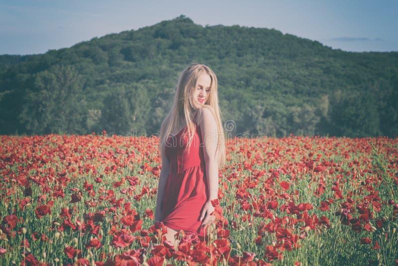 Menina loura nova bonita em um campo da papoila no por do sol fotografia de stock
