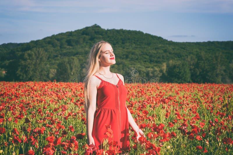 Menina loura nova bonita em um campo da papoila no por do sol fotografia de stock royalty free