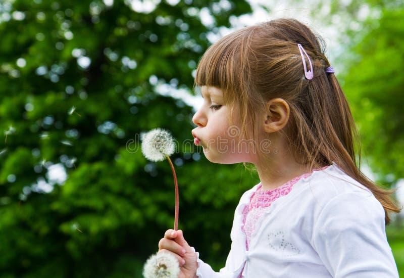 Menina loura pequena bonita que funde um dente-de-leão imagem de stock royalty free