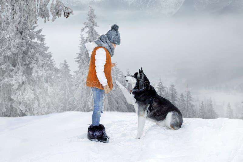 Menina loura pequena bonito que joga na neve com um cão de puxar trenós do cão foto de stock
