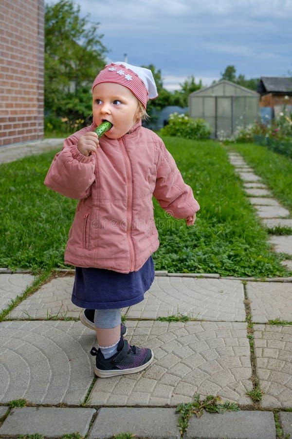 A menina loura pequena em um revestimento cor-de-rosa que está fora come um pepino foto de stock