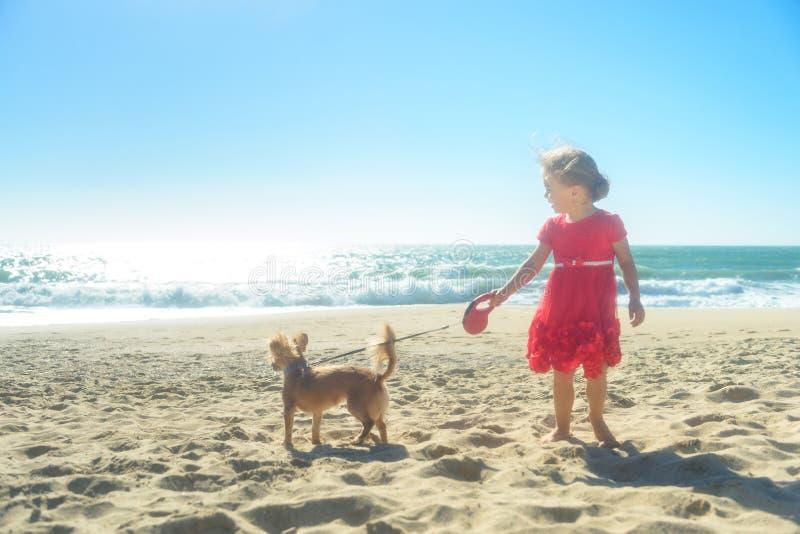 Menina loura pequena no vestido vermelho com o cão na praia foto de stock