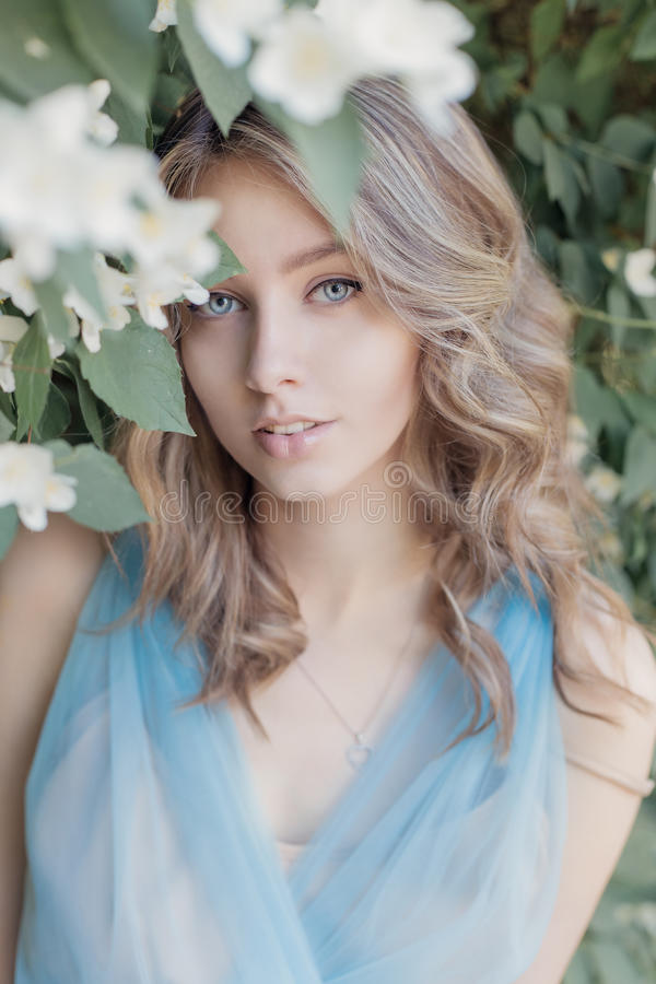 A menina macia doce bonita com olhos azuis em um vestido azul com o cabelo leve encalhado no jasmim floresce imagem de stock royalty free