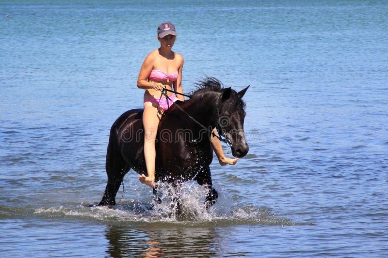 A menina monta um cavalo na água fotografia de stock