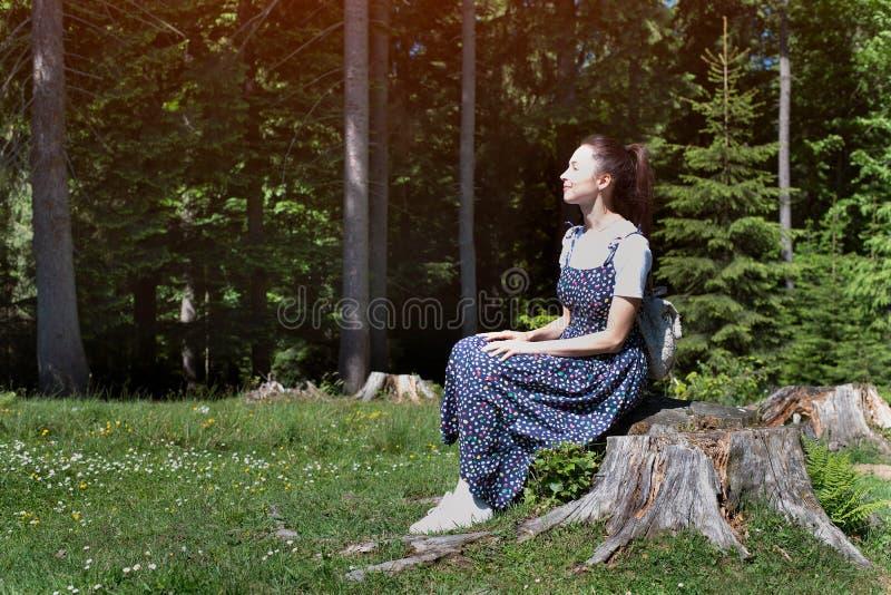 Menina moreno bonita em um vestido que senta-se em um coto no fundo de uma floresta conífera imagens de stock royalty free