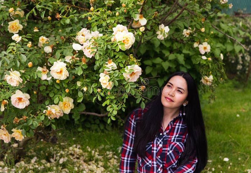 Menina moreno bonita bonita nova em uma camisa de manta que senta-se na grama perto do arbusto das rosas foto de stock royalty free