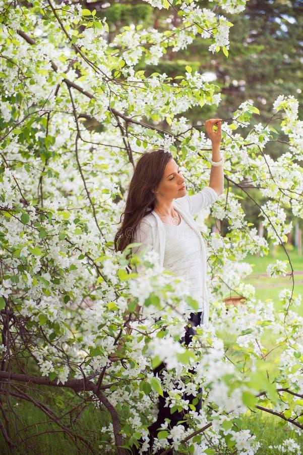 Menina moreno da mola que está exterior em árvores de florescência Beautif fotos de stock royalty free