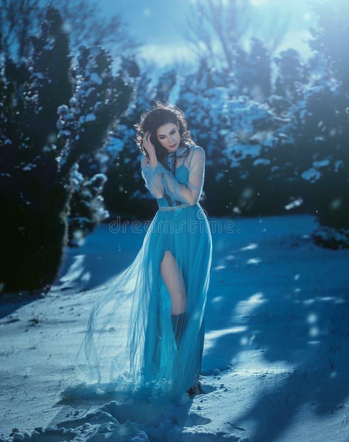 A menina moreno nova está no vestido azul do vintage imagens de stock