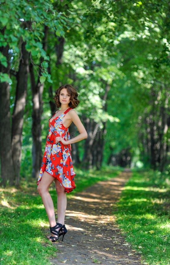 Menina moreno nova no vestido vermelho que levanta na aleia no parque do verão contra árvores foto de stock