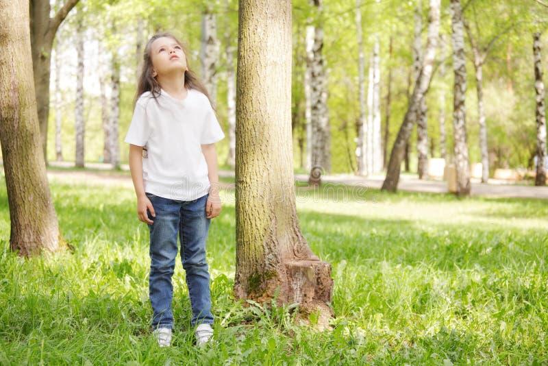 Menina na árvore que olha acima imagem de stock royalty free