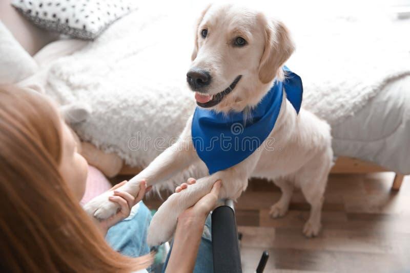 Menina na cadeira de rodas com cão do serviço foto de stock royalty free