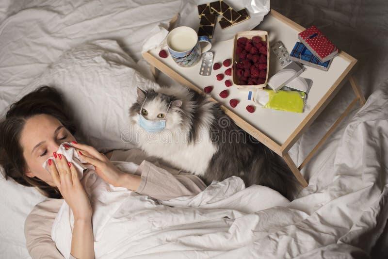 A menina na cama é tratada para um frio com um gato fotos de stock