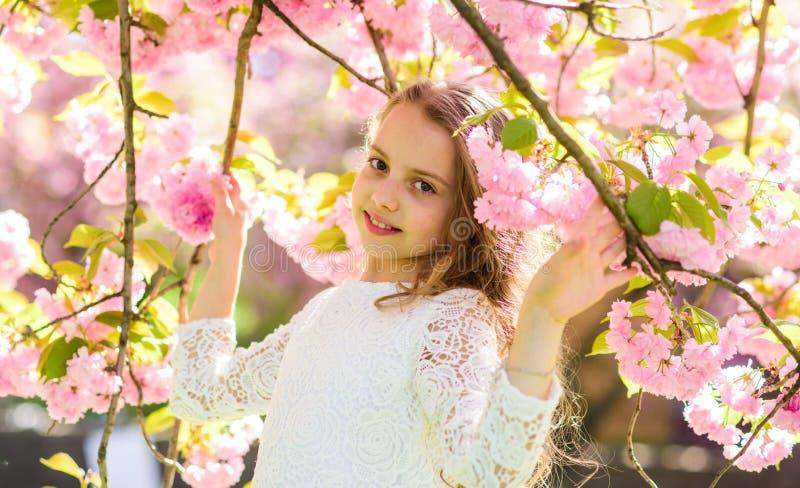 A menina na cara de sorriso que está entre sakura ramifica com as flores, defocused Menina com o cabelo longo exterior, cereja foto de stock royalty free