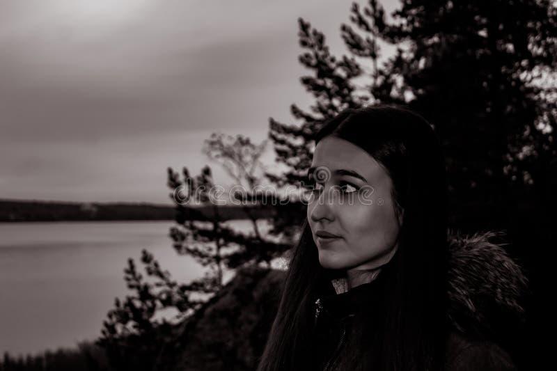 Menina na floresta crepuscular imagens de stock