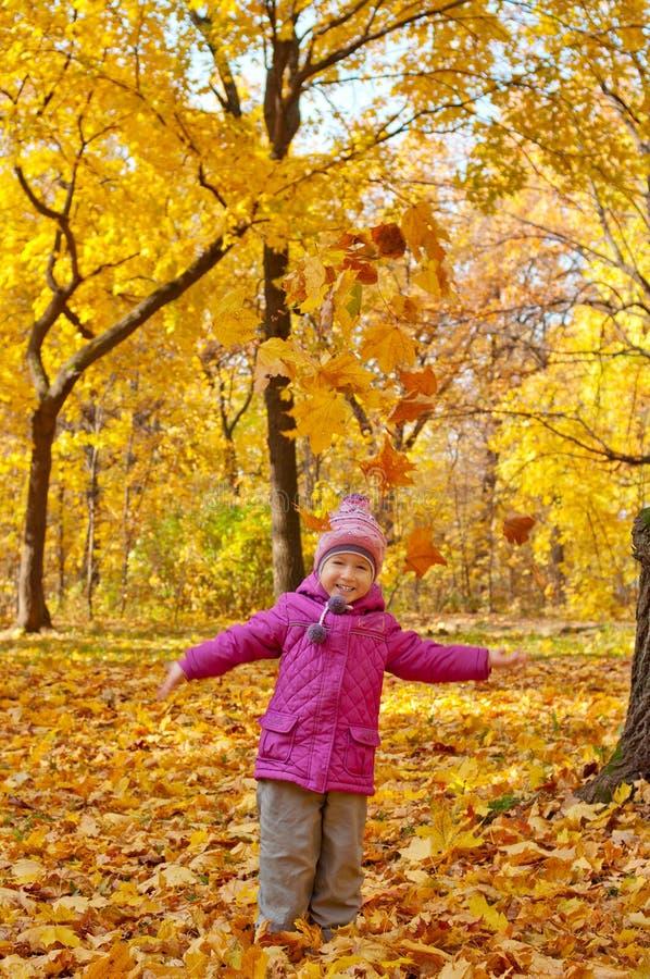 Menina na floresta do outono foto de stock royalty free