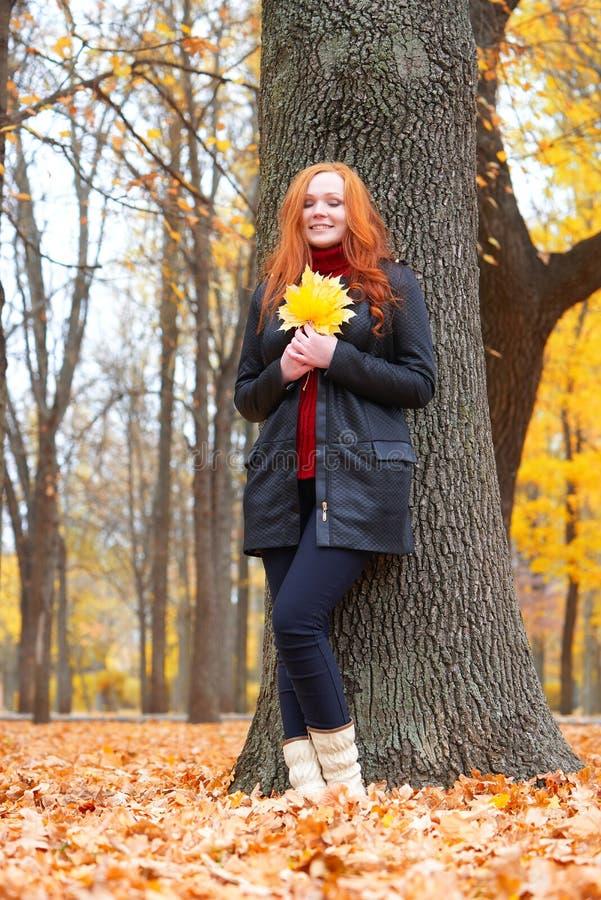 A menina na floresta do outono mantém as folhas nas mãos, suporte perto da árvore grande foto de stock royalty free