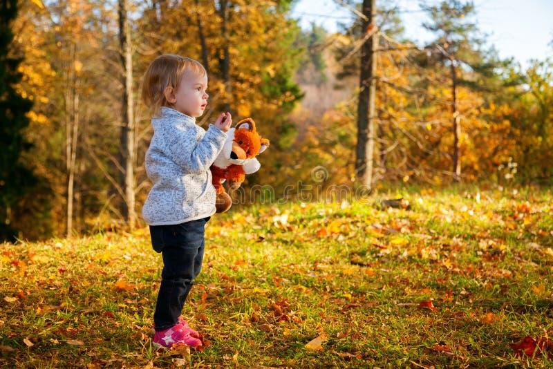 Menina na floresta ensolarada do outono fotografia de stock royalty free