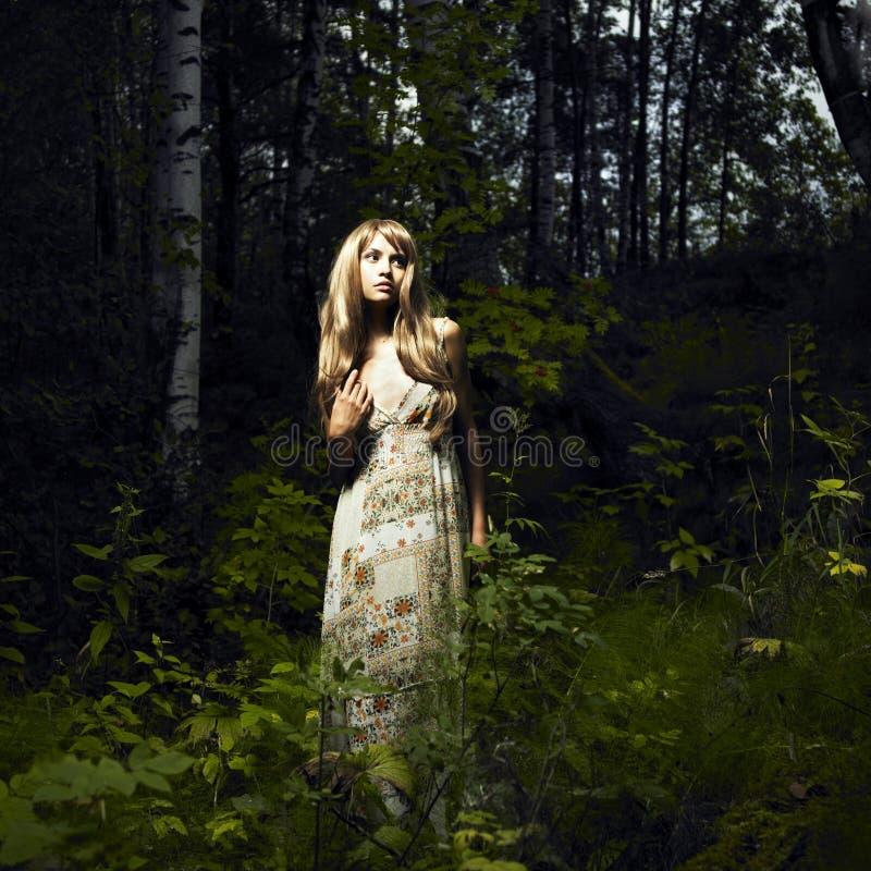 Menina na floresta feericamente fotos de stock