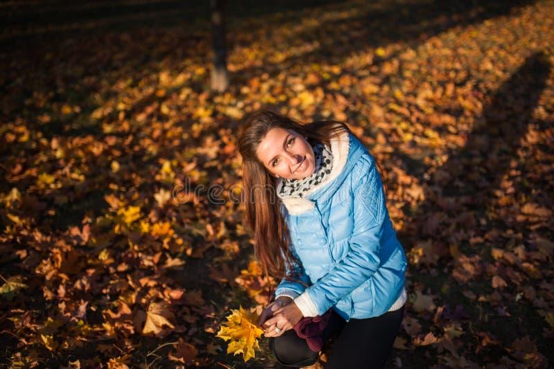 Menina na posição bonita da mulher elegante da floresta do outono em um parque no outono imagem de stock