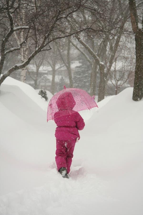 Menina na tempestade do inverno imagens de stock