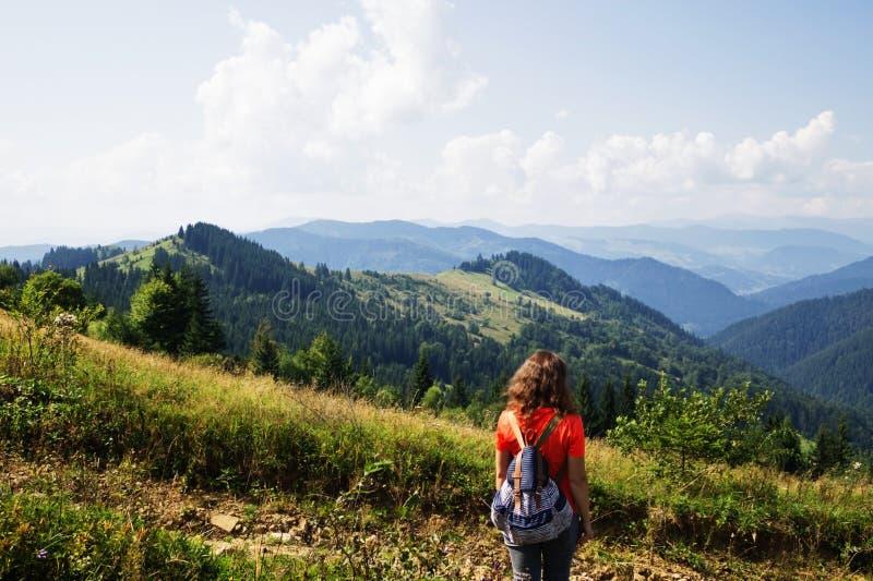 A menina nas montanhas, um viajante fotografou da parte traseira imagem de stock