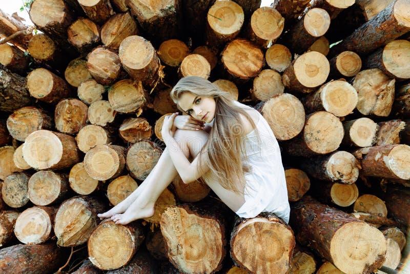 Menina natural no vestido que senta-se em logs foto de stock