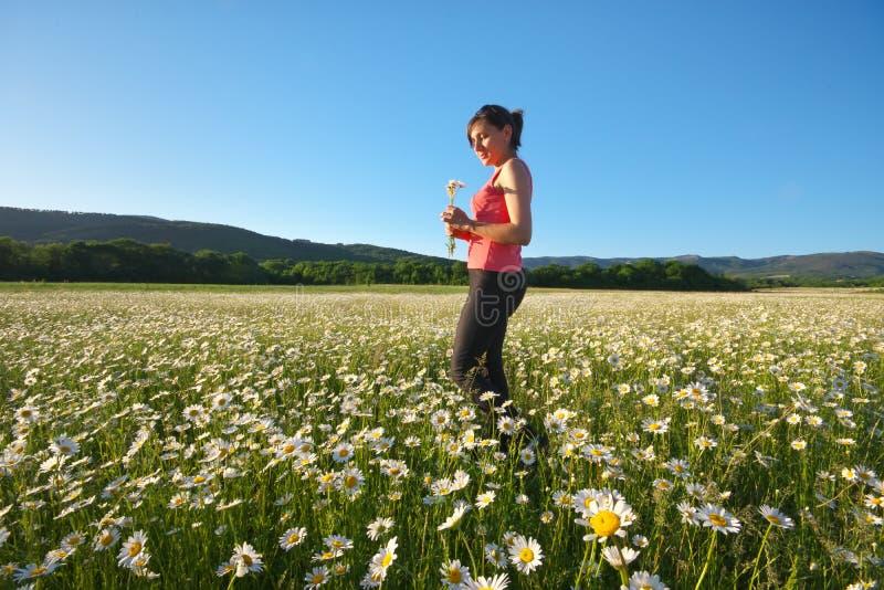 Menina no campo de flor da mola da roda de margarida fotos de stock royalty free