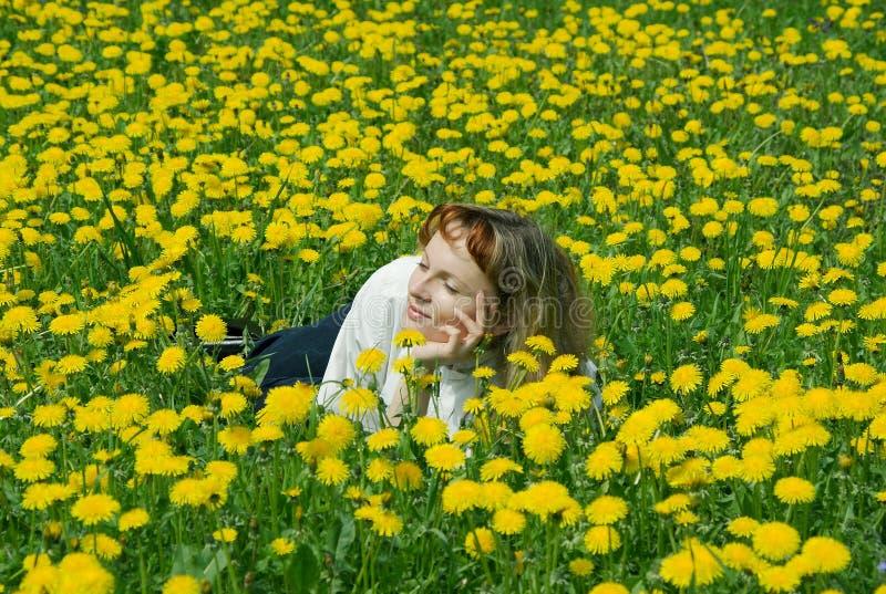 Menina no gramado do dente-de-leão foto de stock