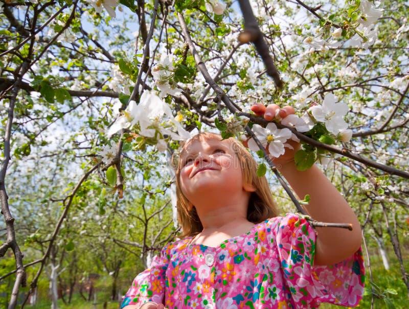 Menina no jardim florescido fotos de stock