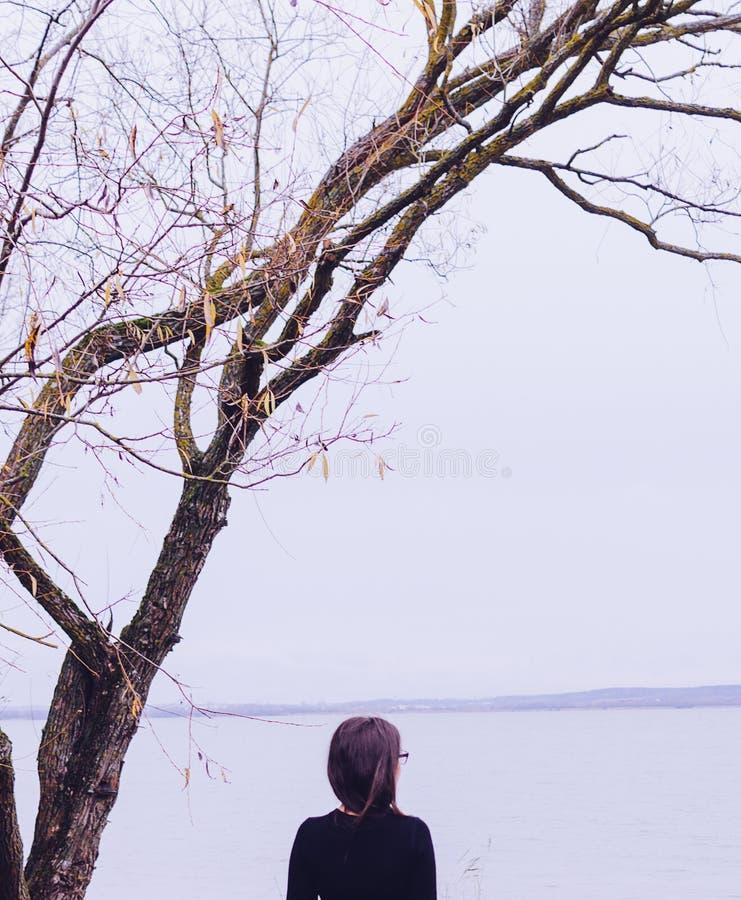 Menina no lago fotografia de stock