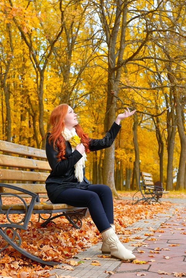 A menina no outono, senta-se no banco no parque da cidade, árvores amarelas e as folhas caídas, aumentam a palma acima imagens de stock