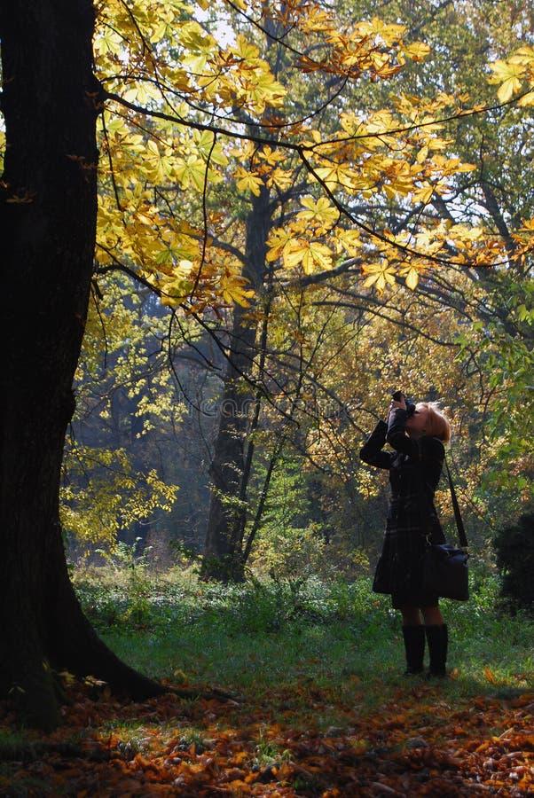 Menina no parque com câmera fotos de stock royalty free