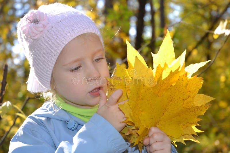A menina no parque do outono foto de stock