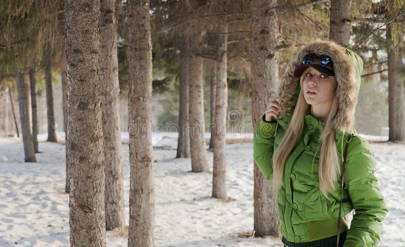 Download Menina No Revestimento Do Inverno Imagem de Stock - Imagem de corpo, fine: 26509065