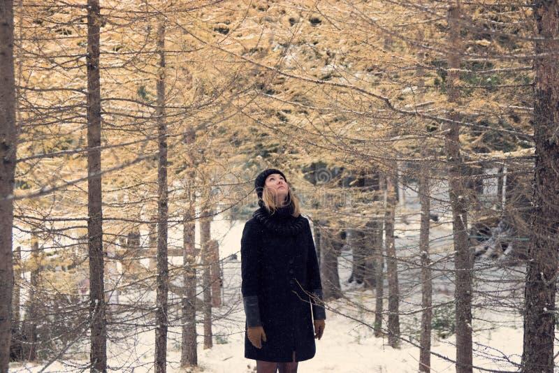 A menina no revestimento preto, chapéu preto da malha, luvas marrons, está na floresta do pinho amarelo no inverno foto de stock