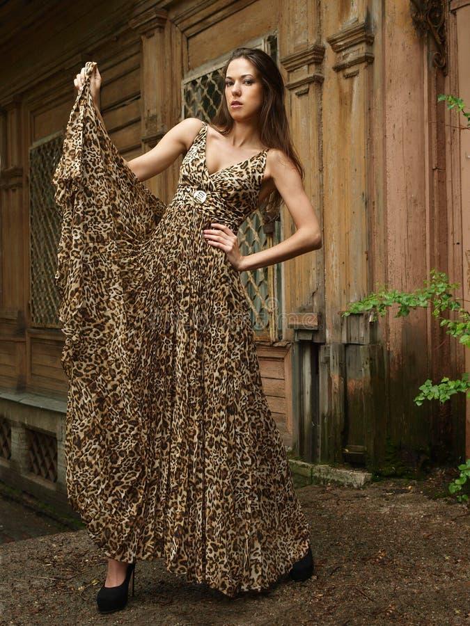 Menina no vestido do leopardo imagens de stock royalty free