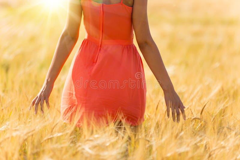 Menina no vestido vermelho que anda no campo de trigo fotografia de stock royalty free