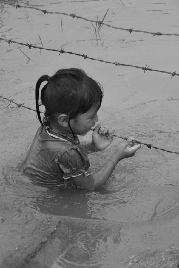 Menina nos campos do arroz foto de stock royalty free