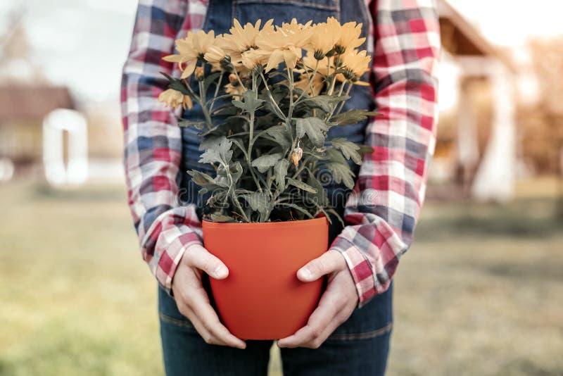 Menina nos t-shirt da forma que mostram como crescendo suas flores fotografia de stock