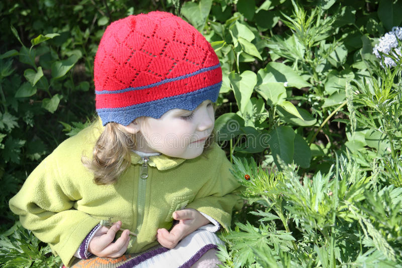 A menina olha o joaninha na folha verde no dia ensolarado fotos de stock royalty free