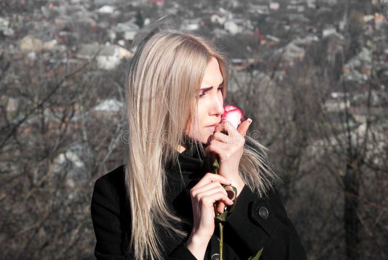 Menina pensativa bonita com rosa do vermelho à disposição imagens de stock
