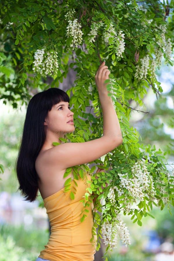 Menina perto da árvore da acácia da flor fotografia de stock royalty free