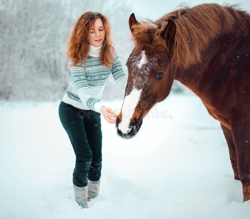 Menina principal vermelha com um cavalo em um campo da neve no inverno imagens de stock royalty free